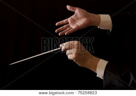 Orchestra conductor hands baton. Music male director holding stick