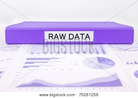 Raw Data, Graphs, Charts And Research Summary