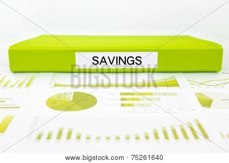 Savings Documents, Graphs And Report Summary For Budget Management