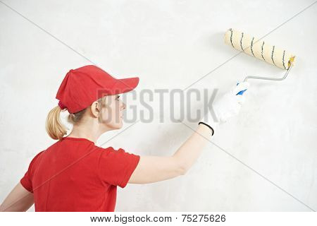 female house painter worker painting and priming wall with painting roller