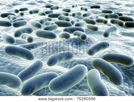 Colony of pathogen bacteria - 3d render
