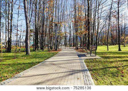Alley Runs Through The City Park In Zakopane