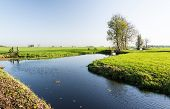 Image of dutch polder landscape in the fall season.