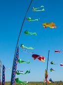 stock photo of kites  - Kites Flying in Cloudless Sky at the Long Beach Kite Festival Washington USA - JPG