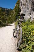 Polish Pieniny Mountain Biking poster