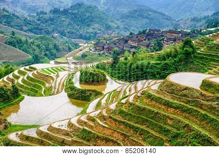 Yaoshan Mountain, Guilin, China hillside rice terraces landscape.