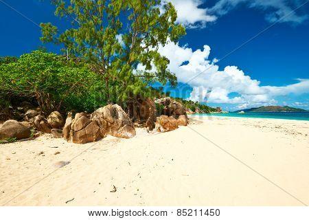 Beautiful beach at Seychelles, Seychelles, Curieuse island