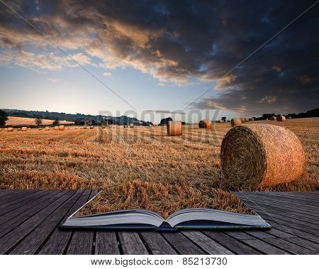 Beautiful Golden Hour Hay Bales Sunset Landscape Conceptual Book Image