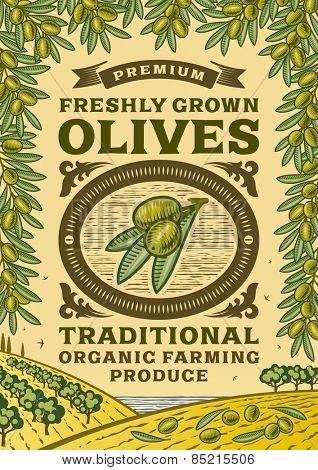 Retro olives poster