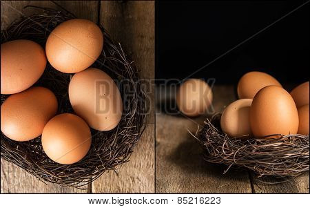 Compilation Of Fresh Eggs Images In Moody Natural Lighting Setting With Vintage Retro Style