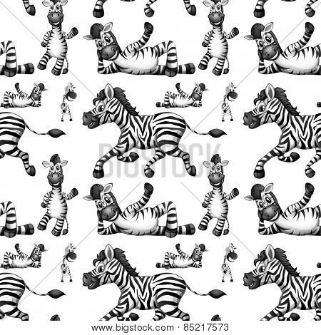 Seamless zebra in different positions