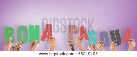 Hands holding up bona pasqua against purple vignette