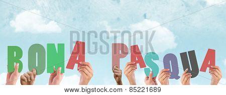 Hands holding up bona pasqua against blue sky