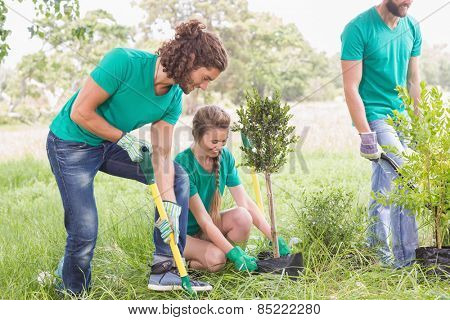 Young woman gardening for the community on a sunny day
