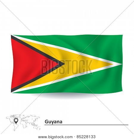 Flag of Guyana - vector illustration