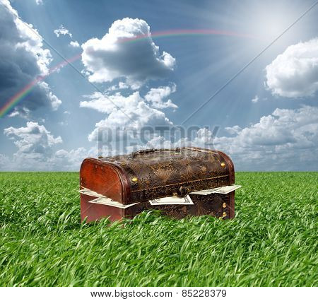 Treasures chest in green grass and blue cloudy sky, USA dollars in box