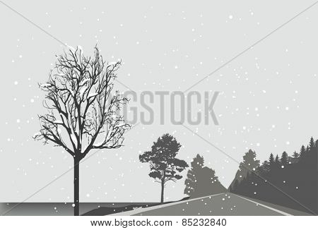 illustration with empty road with forest on roadside