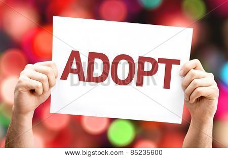 Adopt card with bokeh background