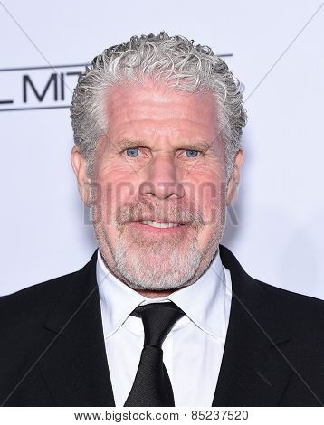 LOS ANGELES - FEB 14:  Ron Perlman arrives to the Make-Up Artists & Hair Stylists Guild Awards 2015  on February 14, 2015 in Hollywood, CA