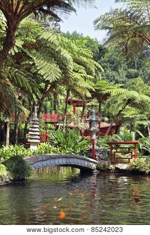 The red Chinese-style pavilions and a wonderful bridge over a pond with goldfish. Lovely park on the island of Madeira -  Monte Palace Tropical Garden