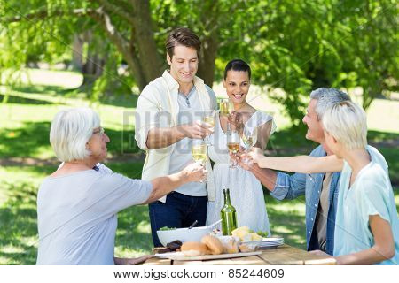 Happy couple toasting with their family on a sunny day
