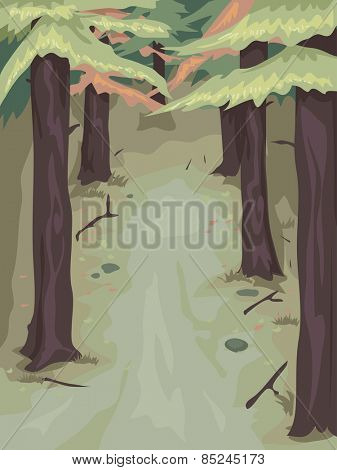 Background Illustration of a Woody Area Populated by Pine Trees