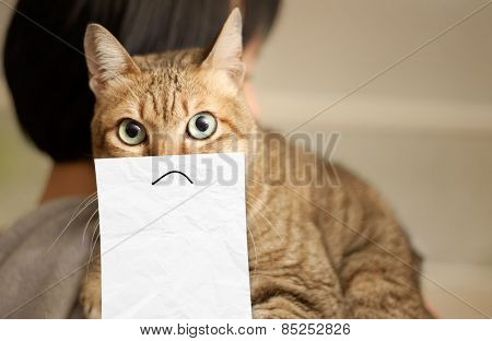 Cat lie on shoulder of woman stare at you with a drawing on paper. Concept of unhappy emotion.