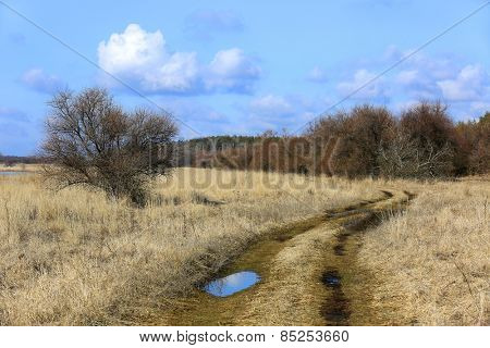 Rut road among spring steppe