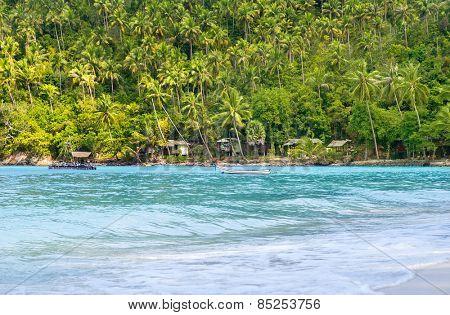 Tropical forest, sea coast and mountains. Siamese bay, Phangan, Thailand.