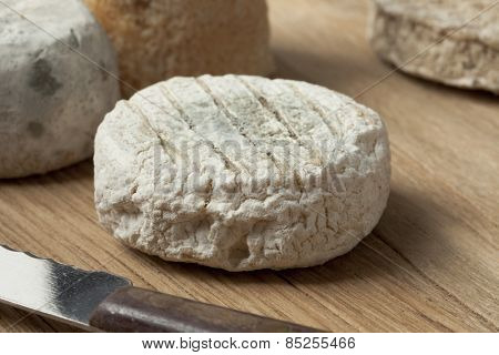 Traditional french goats cheese called chevre d'or