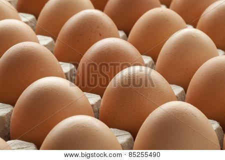 Organic fresh brown eggs in carton crate