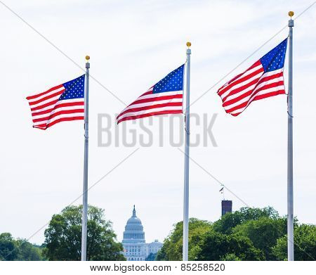 Washington Monument flags and Capitol in DC United States USA