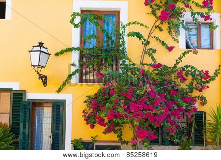 Palma de Mallorca mediterranean facades and flowers in Majorca Balearic island Spain