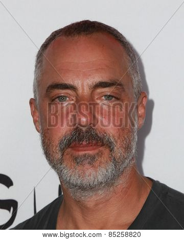 LOS ANGELES - MAR 12:  Titus Welliver at the