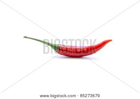 Red Chili Cayenne Curve With Green Stick
