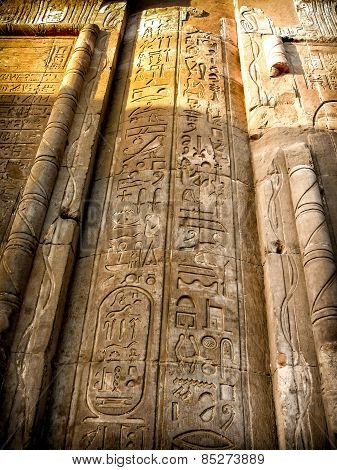 Hieroglyphics In Kom-ombo Mural Column (egypt)
