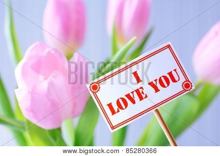 Beautiful pink tulips with tag on light background