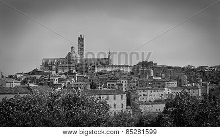 Panorama of the Duomo