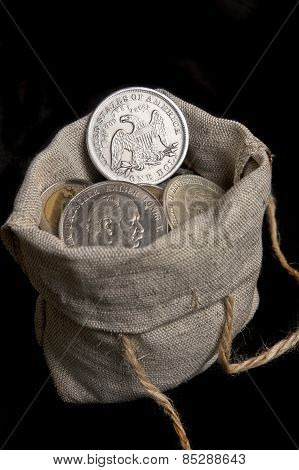 Usa Silver Dollar In Bag