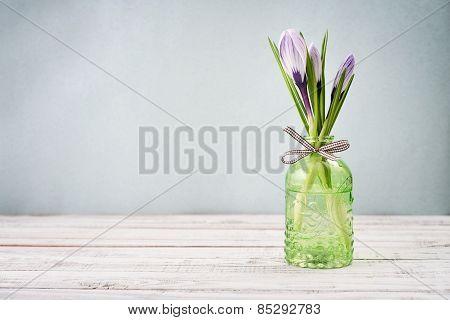 Crocus In Vases