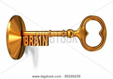 Brain - Golden Key is Inserted into the Keyhole.
