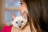 foto of siamese  - Gorgeous young brunette holding sweet young siamese kitten - JPG