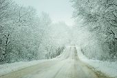 picture of slippery-roads  - Cold winter landscape of a road through forest trees and heavy snow - JPG