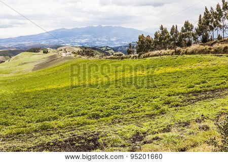 Cultivated fields on slopes of Andes