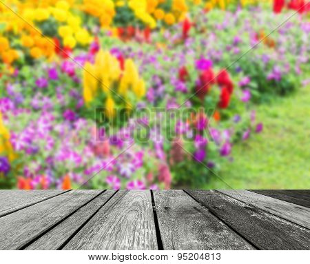 image of Various color flower garden for background usage.