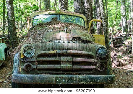 Old Dodge Pickup With Yellow Door