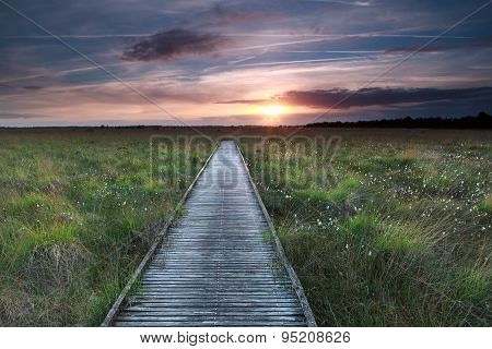 Wooden Path On Marsh And Sunset