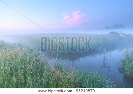Dutch Farmland With River In Foggy Morning