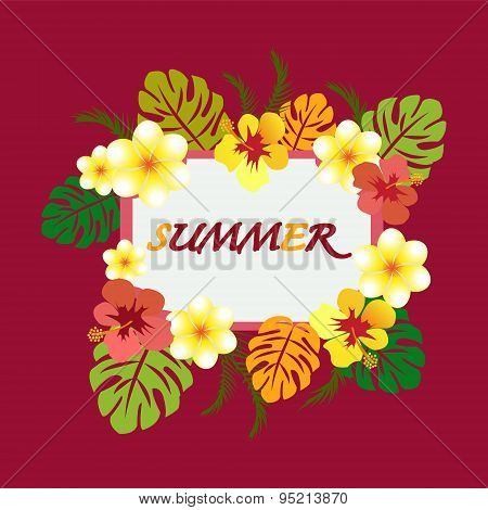 Summer Design With Copy Space