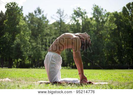 Yoga Ushtrasana Pose In Park